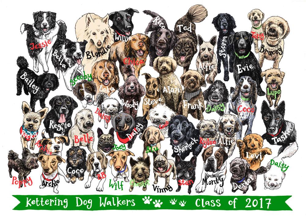 Kettering Dog Walkers